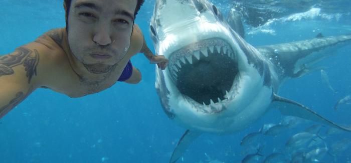 Handige tips om niet te sterven bij het maken van een selfie
